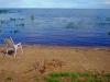 Tiirikoja Puhkekeskus Mustvee Toki uitiin peipsijärves