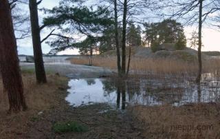 2011-12-26-11-51-09_0001