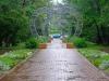 Sydämmellinen puisto